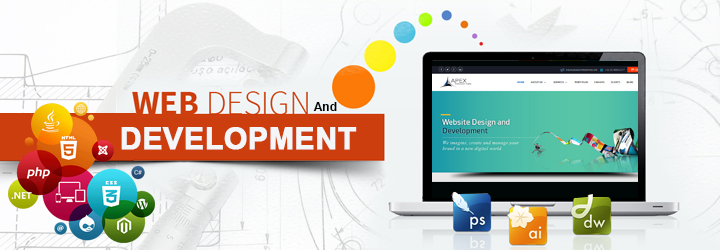 NGOS Website Development Services in Quetta