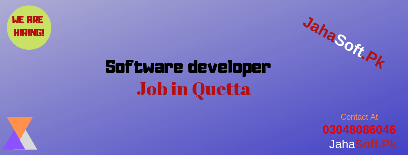 Software developer job in Quetta