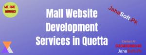 Mall Website Development Services in Quetta